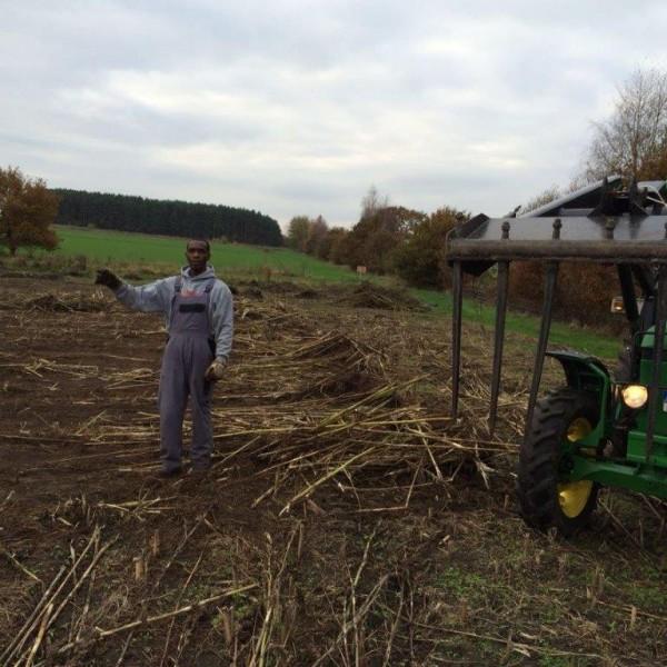 Hanfernte – Trecker auf dem Feld 1
