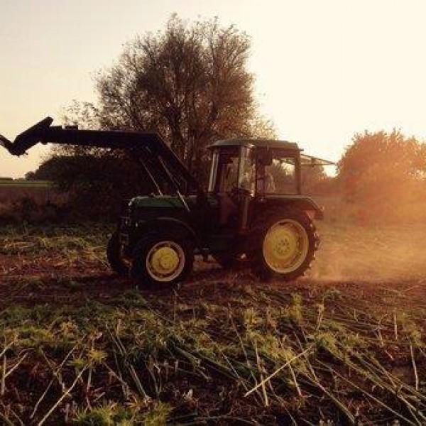 Hanfernte – Trecker auf dem Feld