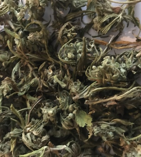 hanfblüten Tee 2